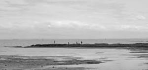 http://pickproperty.com.au/wp-content/uploads/2015/09/Black-Rock-Melbourne-Victoria-beach1-1900x900_c.jpg